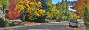 Fort Collins in Fall | Jolly Homes Team at Resident Realty